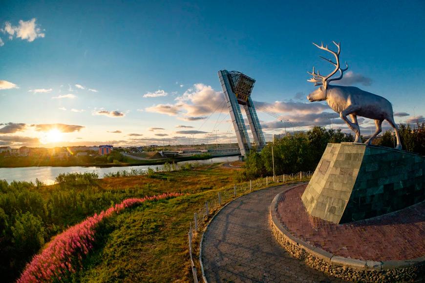 Дистанционно вуз и колледж в Москве из Ямало-ненецкого округа